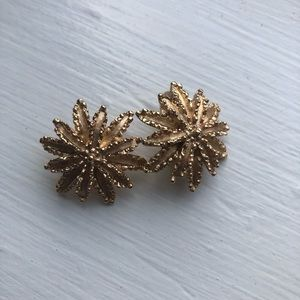Avon Clip On Earrings